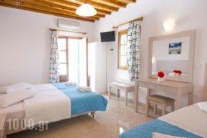 Cyclades Studios_holidays_in_Hotel_Cyclades Islands_Mykonos_Mykonos ora