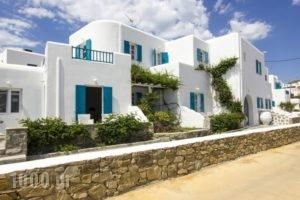 Cyclades Studios_accommodation_in_Hotel_Cyclades Islands_Mykonos_Mykonos ora