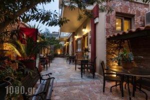 Pension Dafni_best deals_Hotel_Peloponesse_Argolida_Nafplio