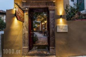 Pension Dafni_holidays_in_Hotel_Peloponesse_Argolida_Nafplio
