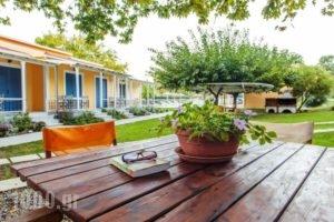 Billy'S House_holidays_in_Hotel_Ionian Islands_Lefkada_Vasiliki