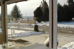 To Spiti Tis Sofias_holidays_in_Hotel_Macedonia_kastoria_Nestorio