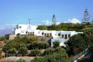 Kounenos Apartments_best prices_in_Apartment_Crete_Lasithi_Aghios Nikolaos