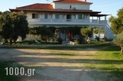 Mikro Nisi Studios in Zakinthos Rest Areas, Zakinthos, Ionian Islands