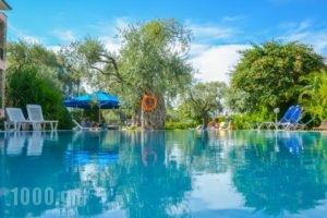 Villa Eden_holidays_in_Villa_Aegean Islands_Thasos_Thasos Chora