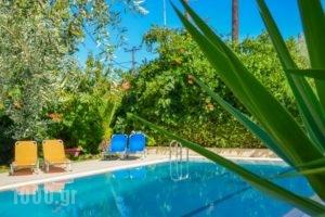 Villa Eden_best prices_in_Villa_Aegean Islands_Thasos_Thasos Chora