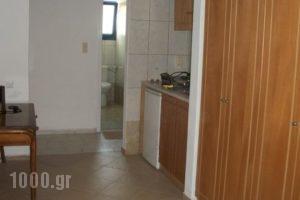 Michelle's Studios_best prices_in_Hotel_Aegean Islands_Lesvos_Kalloni