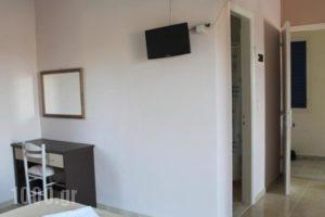 Michelle's Studios_lowest prices_in_Hotel_Aegean Islands_Lesvos_Kalloni