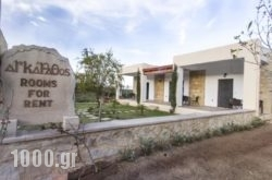 Agarathos in Kissamos, Chania, Crete