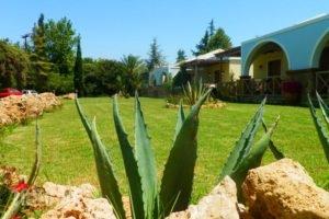 Trikalioti'S Estate_lowest prices_in_Hotel_Peloponesse_Ilia_Pyrgos