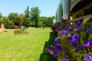 Trikalioti'S Estate_best deals_Hotel_Peloponesse_Ilia_Pyrgos