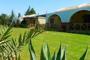 Trikalioti'S Estate_accommodation_in_Hotel_Peloponesse_Ilia_Pyrgos