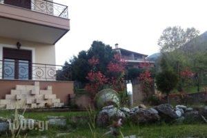 Olympus House_holidays_in_Hotel_Macedonia_Pieria_Litochoro