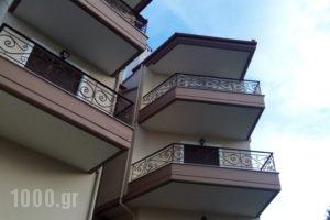 Olympus House_accommodation_in_Hotel_Macedonia_Pieria_Litochoro