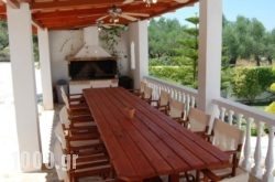 Rodis Studios in Zakinthos Rest Areas, Zakinthos, Ionian Islands