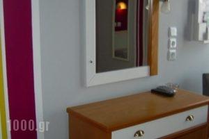Iridanos_lowest prices_in_Hotel_Central Greece_Fokida_Delfi