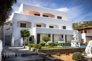 Blue Era Apartments_accommodation_in_Apartment_Cyclades Islands_Andros_Batsi