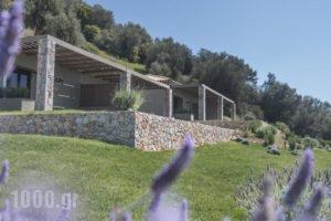 Elimnion Resort_holidays_in_Hotel_Central Greece_Fthiotida_Livanates