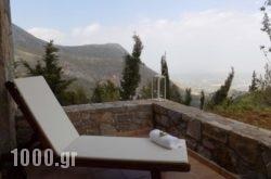 Aetovigla Guesthouse in Kroussonas, Heraklion, Crete