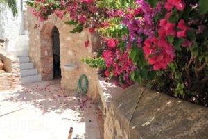 The Stone House_accommodation_in_Hotel_Piraeus Islands - Trizonia_Hydra_Hydra Chora