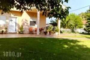 Corali Studios_travel_packages_in_Epirus_Preveza_Parga