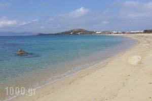 Margaret of Naxos_holidays_in_Hotel_Cyclades Islands_Naxos_Naxos Chora