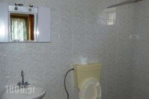 Taygetos Apartments_best prices_in_Apartment_Thessaly_Magnesia_Pilio Area