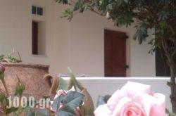 Spanou Apartments in Galatas, Chania, Crete