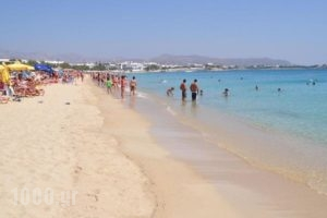Margaret of Naxos_best deals_Hotel_Cyclades Islands_Naxos_Naxos Chora