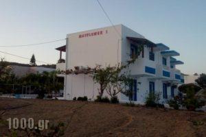 Mayflower 1_holidays_in_Hotel_Dodekanessos Islands_Kos_Kos Rest Areas