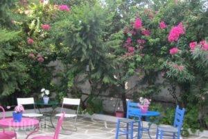 Meletis Studios_lowest prices_in_Hotel_Cyclades Islands_Paros_Paros Chora