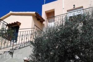 Ktima Tzamika_best deals_Hotel_Crete_Chania_Vryses Apokoronas