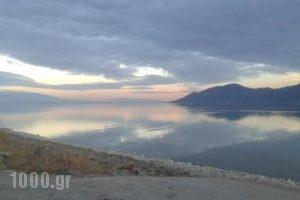Ktima Tzamika_lowest prices_in_Hotel_Crete_Chania_Vryses Apokoronas