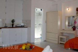 Marsoula'S Studios_lowest prices_in_Hotel_Cyclades Islands_Mykonos_Mykonos ora