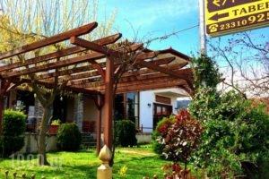 Evridiki_travel_packages_in_Macedonia_Imathia_Vergina