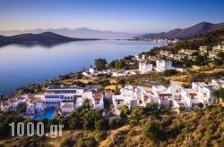 Selena Hotel Elounda in Aghios Nikolaos, Lasithi, Crete