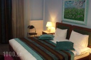 Giasimo_accommodation_in_Hotel_Central Greece_Viotia_Arachova