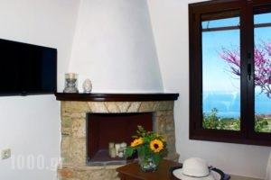 Georgia Villas_best prices_in_Villa_Ionian Islands_Lefkada_Drimonas