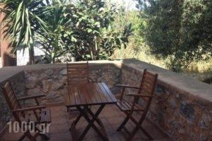 Eva Villa_accommodation_in_Villa_Crete_Chania_Therisos