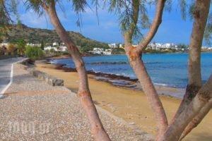 Villa Flouri_accommodation_in_Villa_Crete_Heraklion_Malia