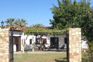 Dino'S Cottage_accommodation_in_Hotel_Macedonia_Halkidiki_Toroni