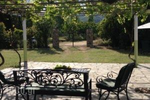 Dino'S Cottage_best deals_Hotel_Macedonia_Halkidiki_Toroni