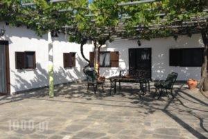 Dino'S Cottage_travel_packages_in_Macedonia_Halkidiki_Toroni