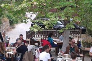 Tetrapolis_holidays_in_Hotel_Central Greece_Fokida_Amfissa
