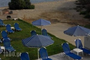 Viaros Apartments_holidays_in_Apartment_Crete_Chania_Platanias