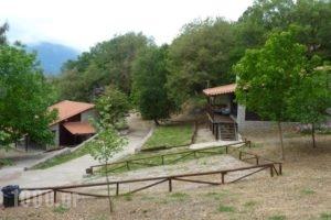 Tetrapolis_travel_packages_in_Central Greece_Fokida_Amfissa