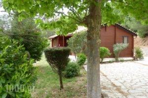 Tetrapolis_best deals_Hotel_Central Greece_Fokida_Amfissa