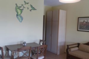 Leonidas_best deals_Hotel_Thessaly_Magnesia_Almiros