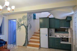 Taletos Apartments_best deals_Apartment_Thessaly_Magnesia_Pilio Area