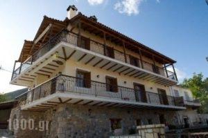 Avissinia_holidays_in_Hotel_Peloponesse_Arcadia_Levidi